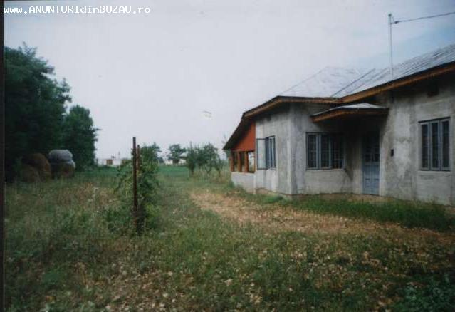 Anunturi Imobiliare din Buzau doar pe ImobileBuzau.ro