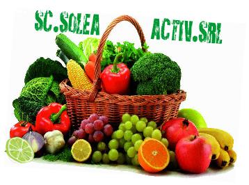 Angajez distribuitor legume si fruce