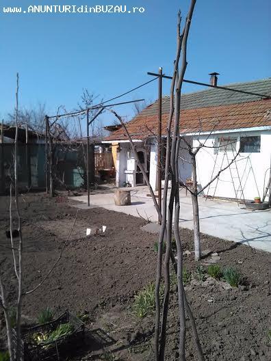Se vinde o casa situata in satul POTÂRNICHESTI (7 km de Buza
