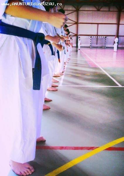 Instructor Arte Martiale
