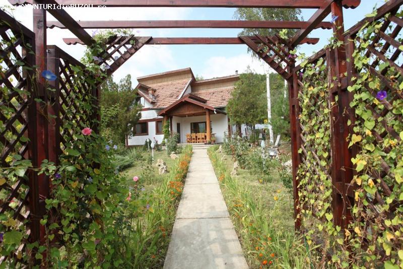Vila de vanzare sat Mierea, judet Buzau