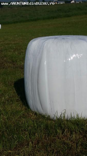 Vand baloti de lucerna infoliati de 500kg.