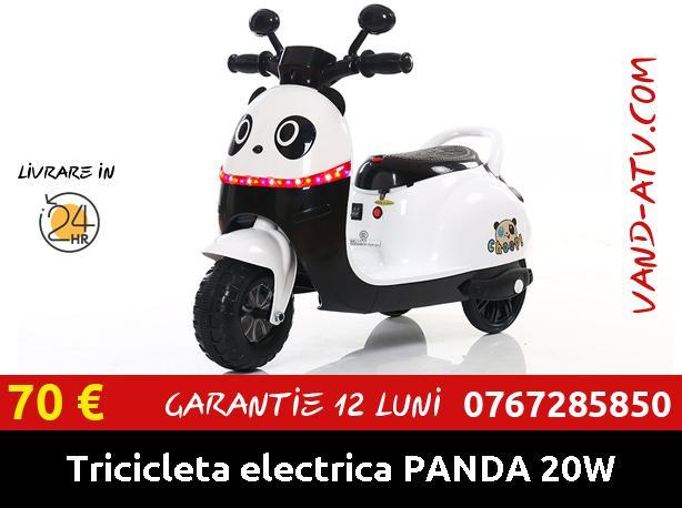 Tricicleta electrica PANDA pentru copii 20W 6V cu efecte son
