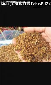 Vând tutun tocat fin la un preț avantajos