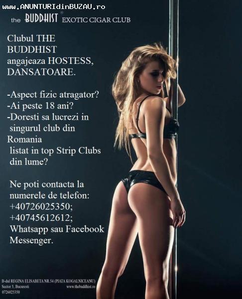 Urgent angajam 10 dansatoare si hostesse