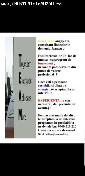 Job consultant financiar