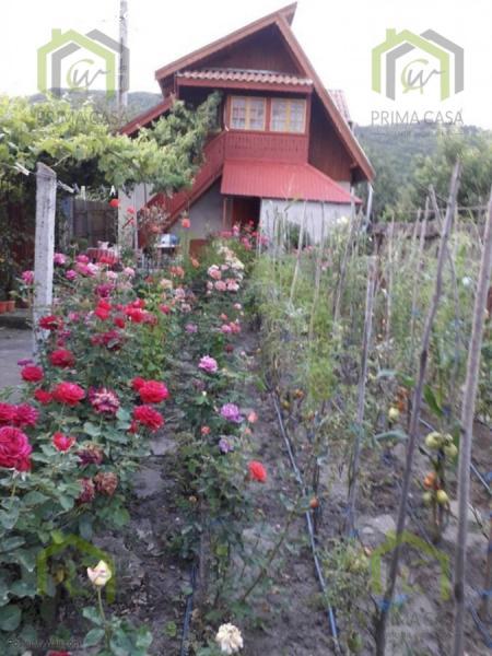 Casa de vacanta P+M in Ratesti; comuna Berca; Pret 30.000€ n