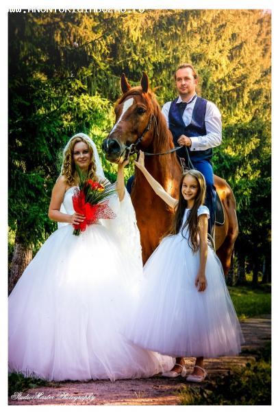 Fotografie Film Muzica-DJ nunti botezuri