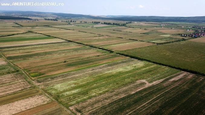 VAND teren agricol extravilan Caineni-bai