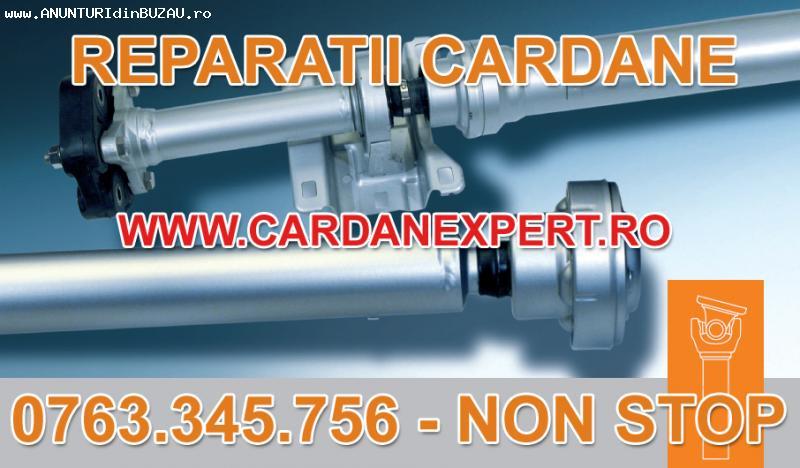 Reparatie Cardan IVECO EUROTRAKKER