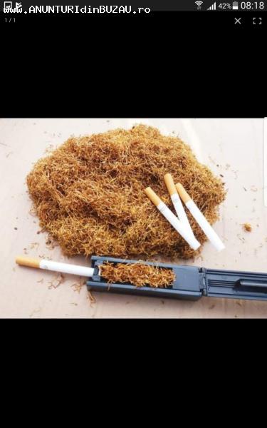 Tutun firicel și tocat calitatea foarte buna