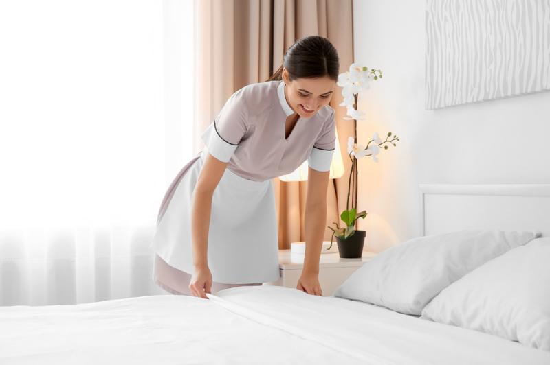 germania domeniul hotelier