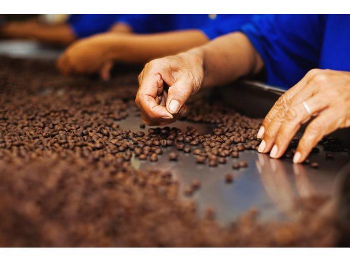 fabrica de cafea Germania