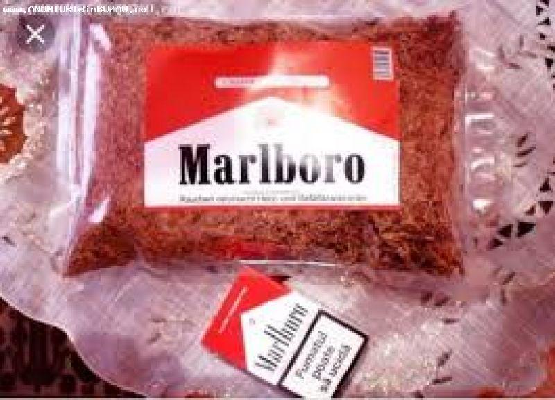 Vând tutun firicel Marlboro roșu