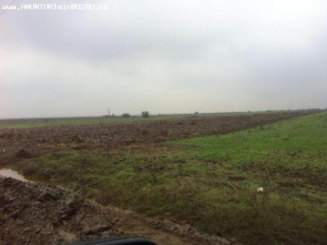 Cumpar teren arabil sau pasiune