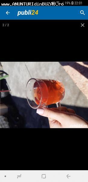 Vand țuică tescovina și vin