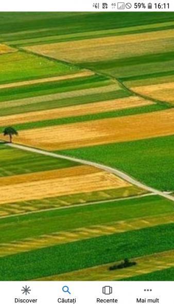 Vand 2500 mp teren arabil calitate f buna Padina
